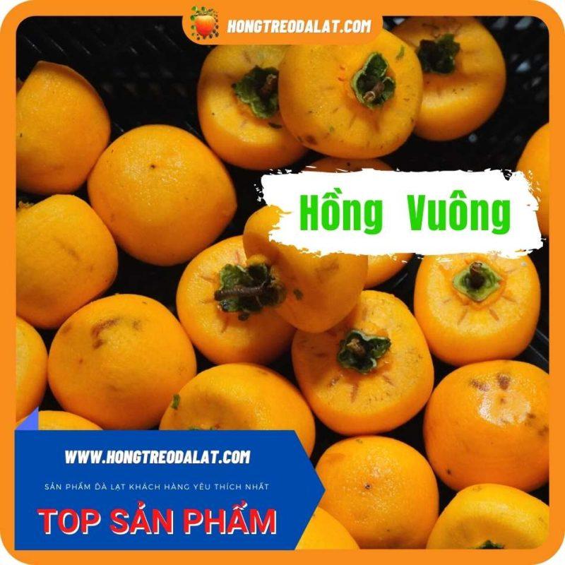 Hồng Vuông Treo